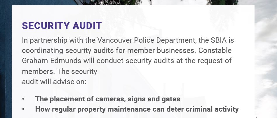 Slideshow image for Security Audit