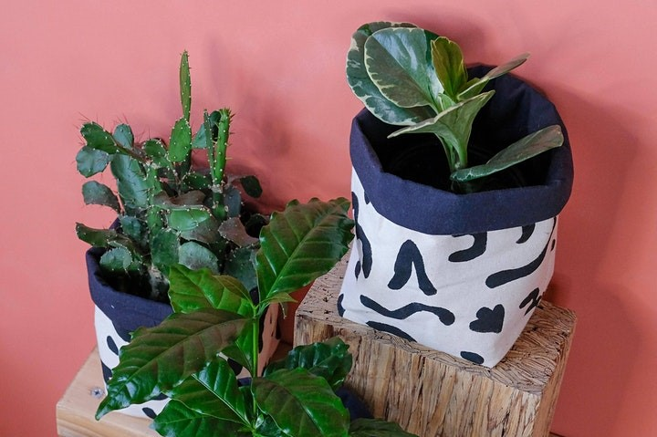 Decorative fabric baskets with plants inside