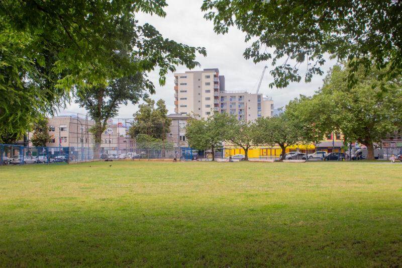 Oppenheimer Park